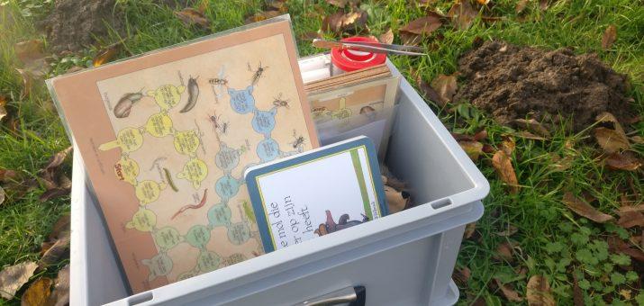 Activiteiten over bodemdieren in de Nooterhof (zondagen, aanmelding vooraf)