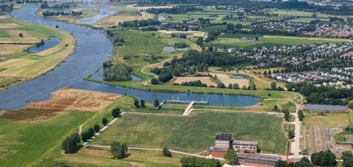 Bescherm en versterk groen IJsselcentrale-terrein